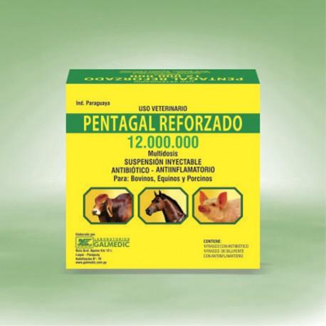 PENTAGAL REFORZADO 12.000.000