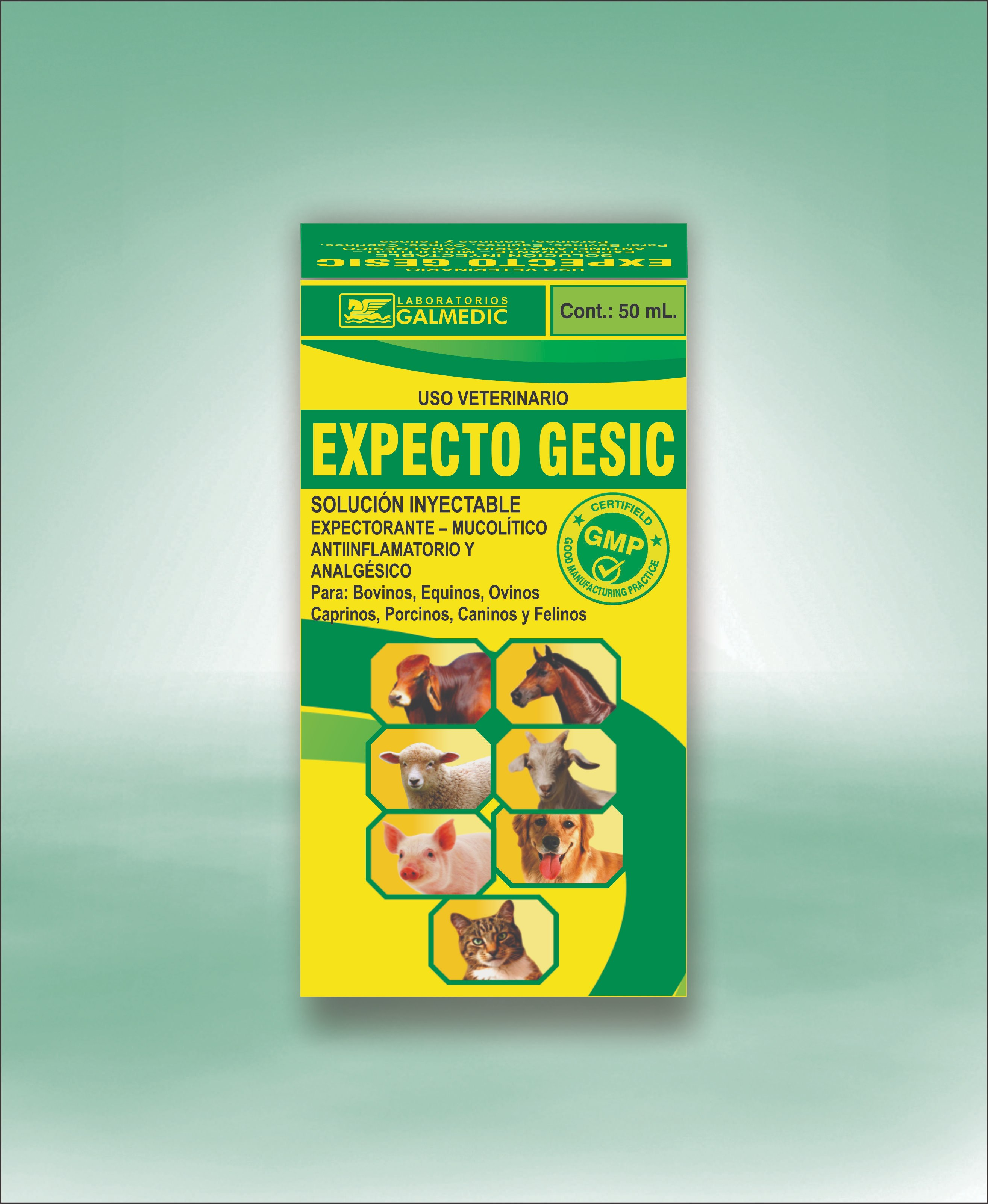 EXPECTO GESIC