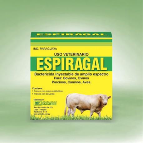 ESPIRAGAL