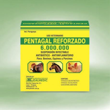 PENTAGAL REFORZADO 6.000.000
